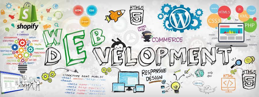 custom-web-development-saminus-hisar